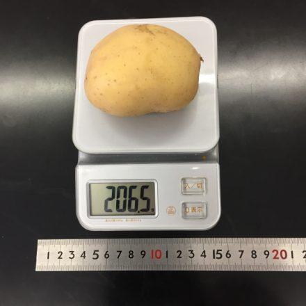 食品の計量